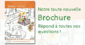 Notre nouvelle brochure IC répond à toutes vos questions !